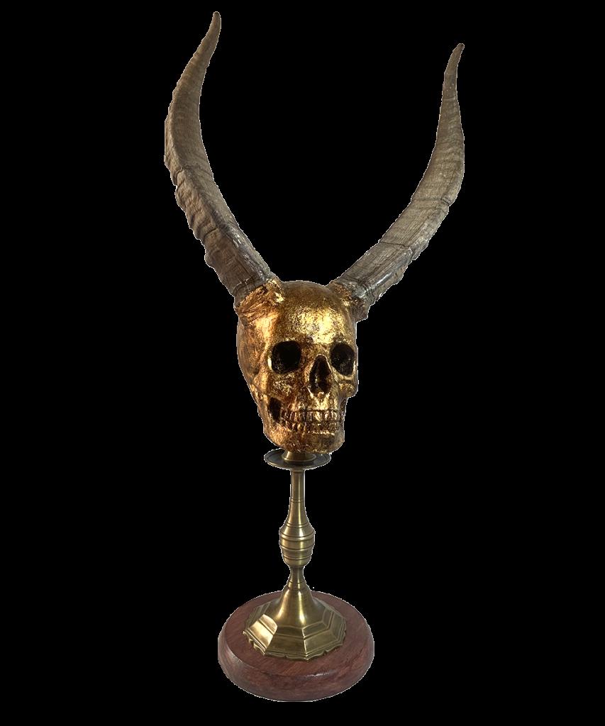 pedestal cráneo calavera con cuernos reales de cabra macho hispánica